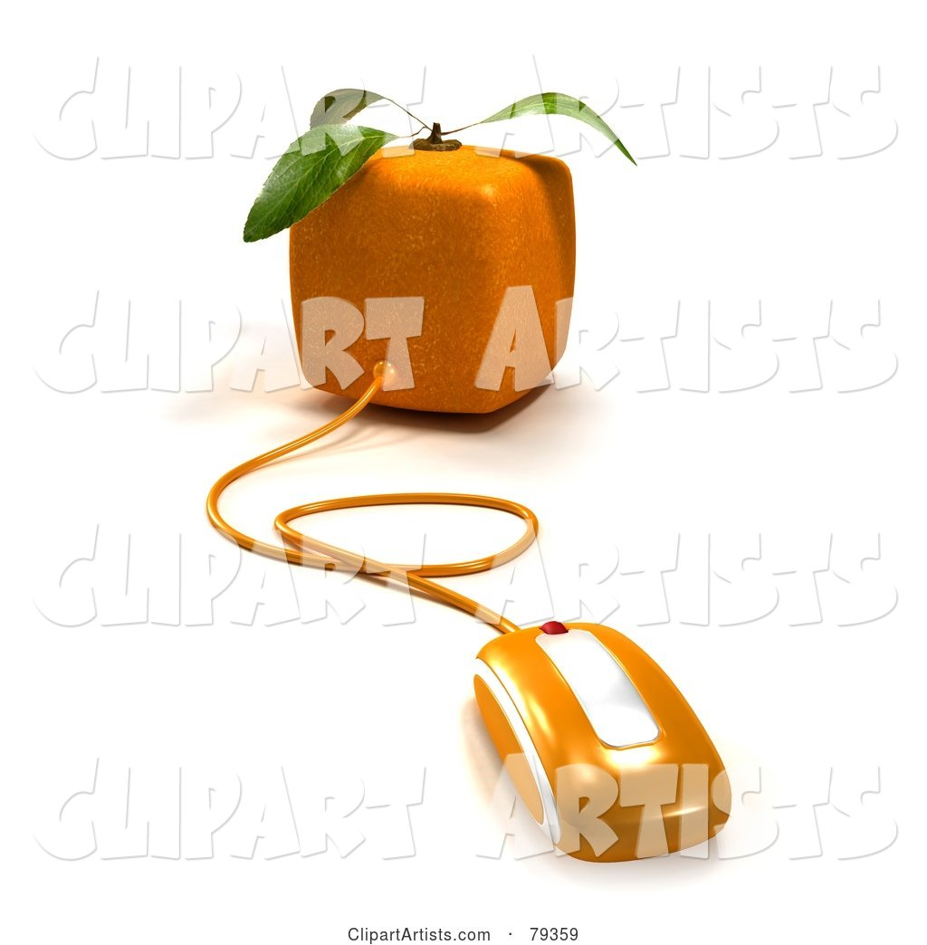Cubic Genetically Modified Orange Fruit with a Computer Mouse