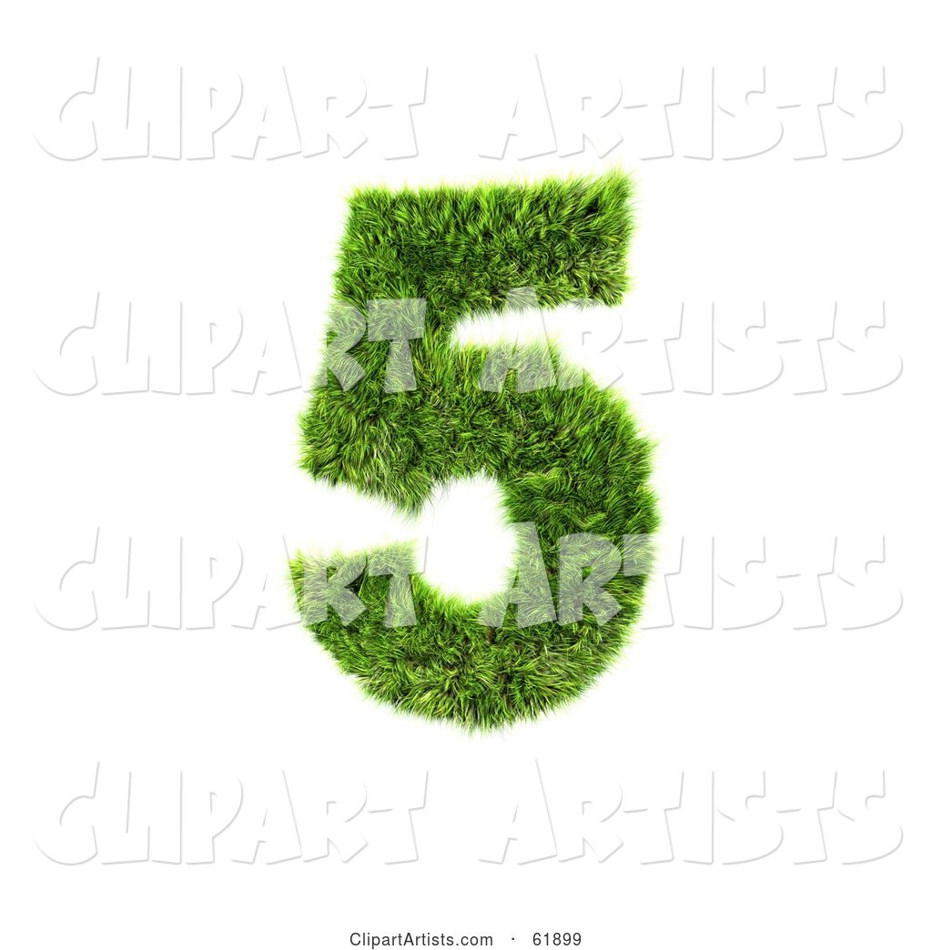 Green Grassy Number; 5