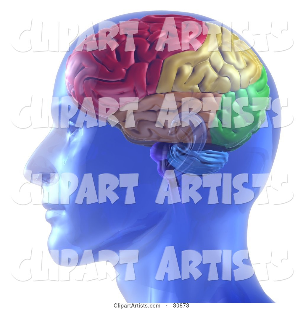 Rendered Transparent Blue Man with a Colorful Brain