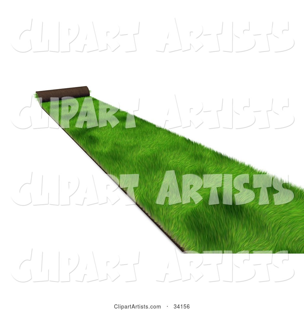 Roll of Green Sod Being Spread over a White Background