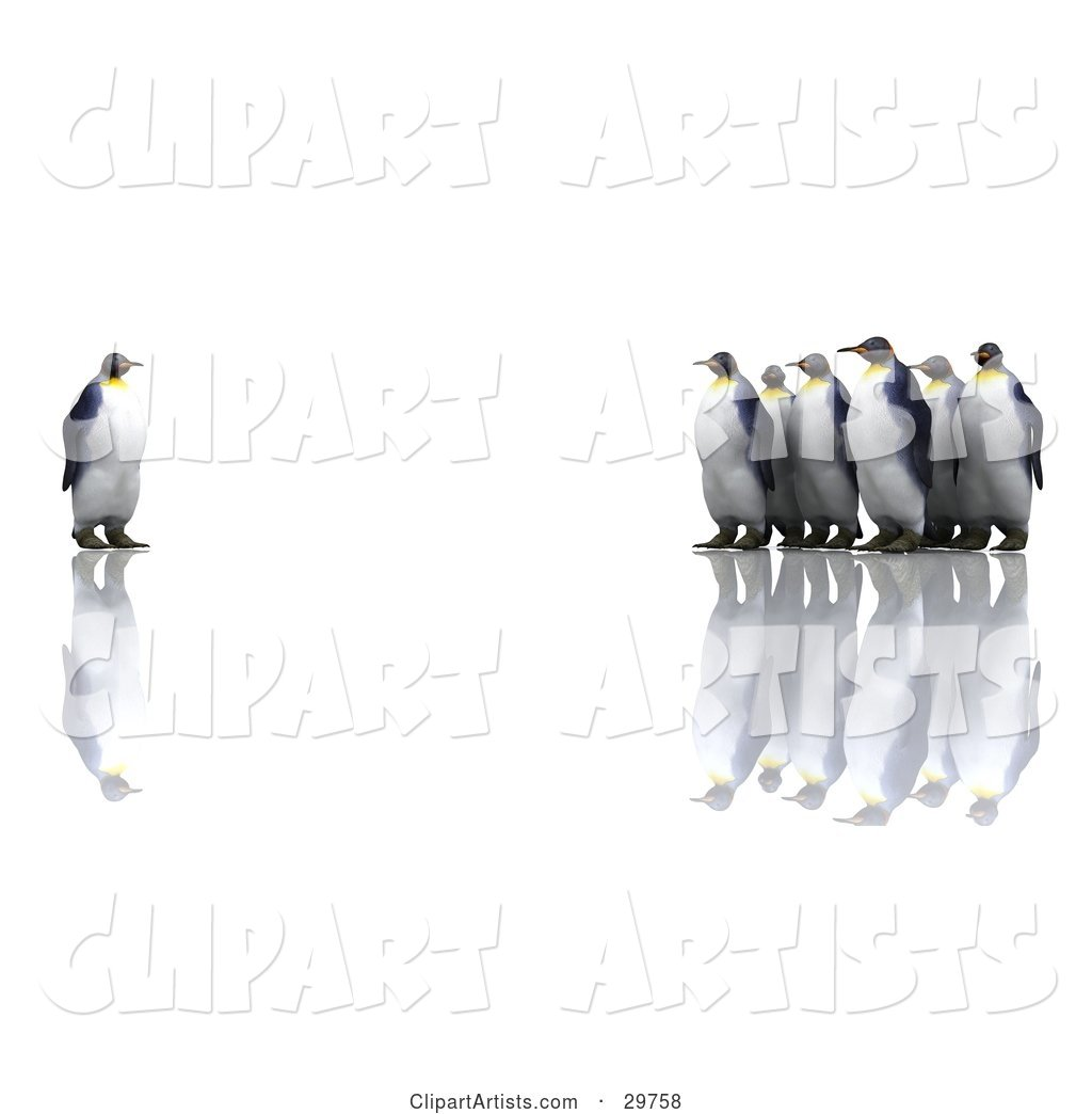 Group of Penguins Staring at an Individual One, Symbolizing Standing out from the Crowd