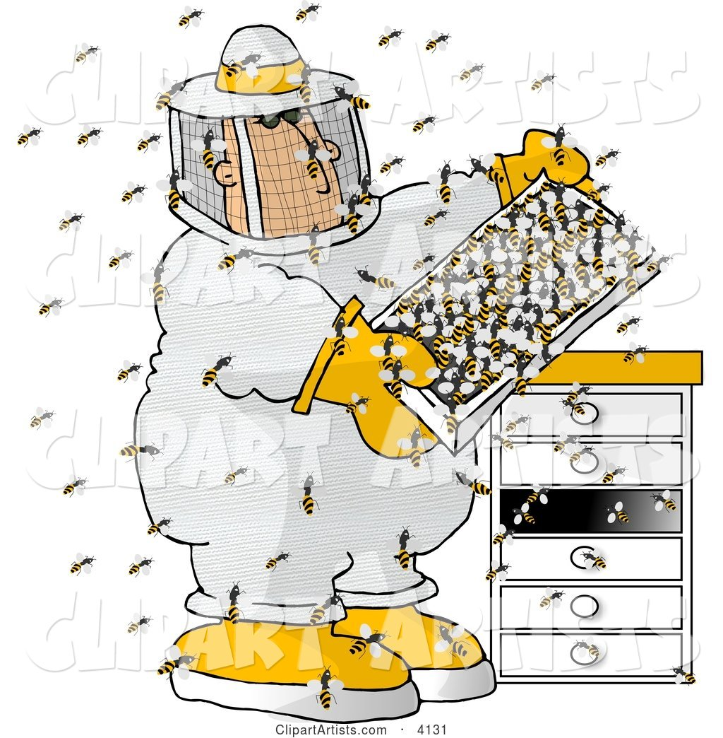 Male Beekeeper Checking a Honeybee Apiary (Bee Hives)