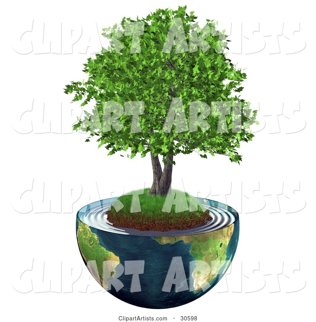 Realistic Tree with Lush Green Leaves, Growing on a Grassy Hill with Dirt in the Center of Planet Earth Cut in Half