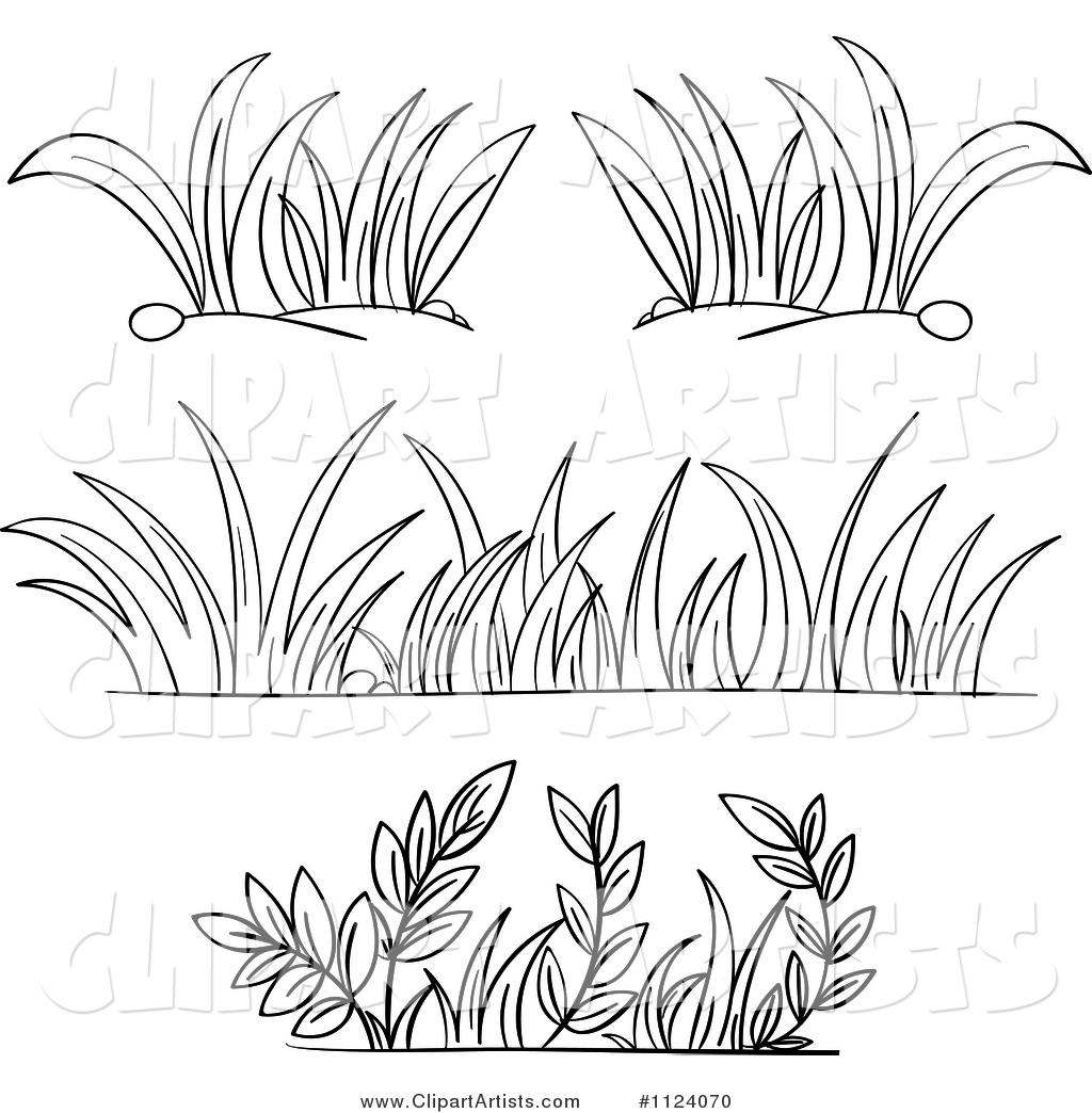 Black and White Borders of Grasses and Plants