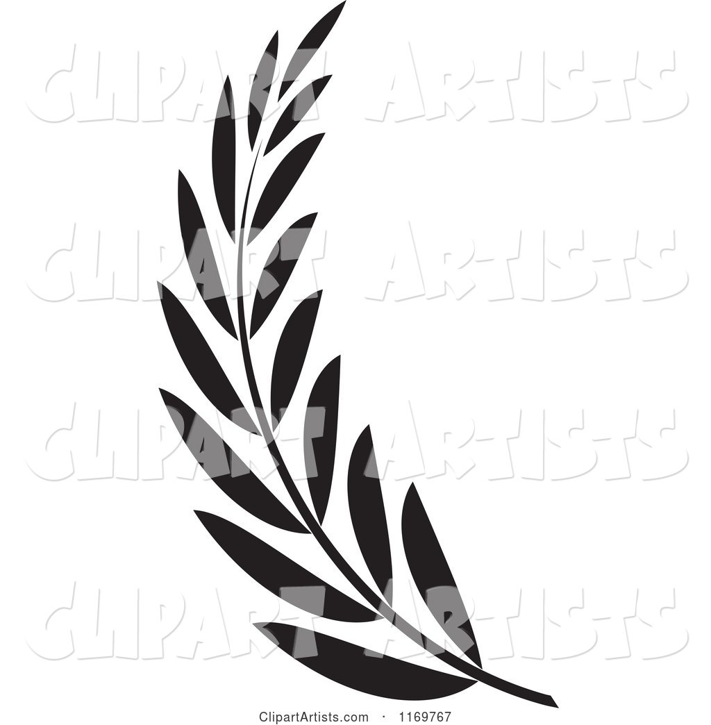 Black and White Olive Branch