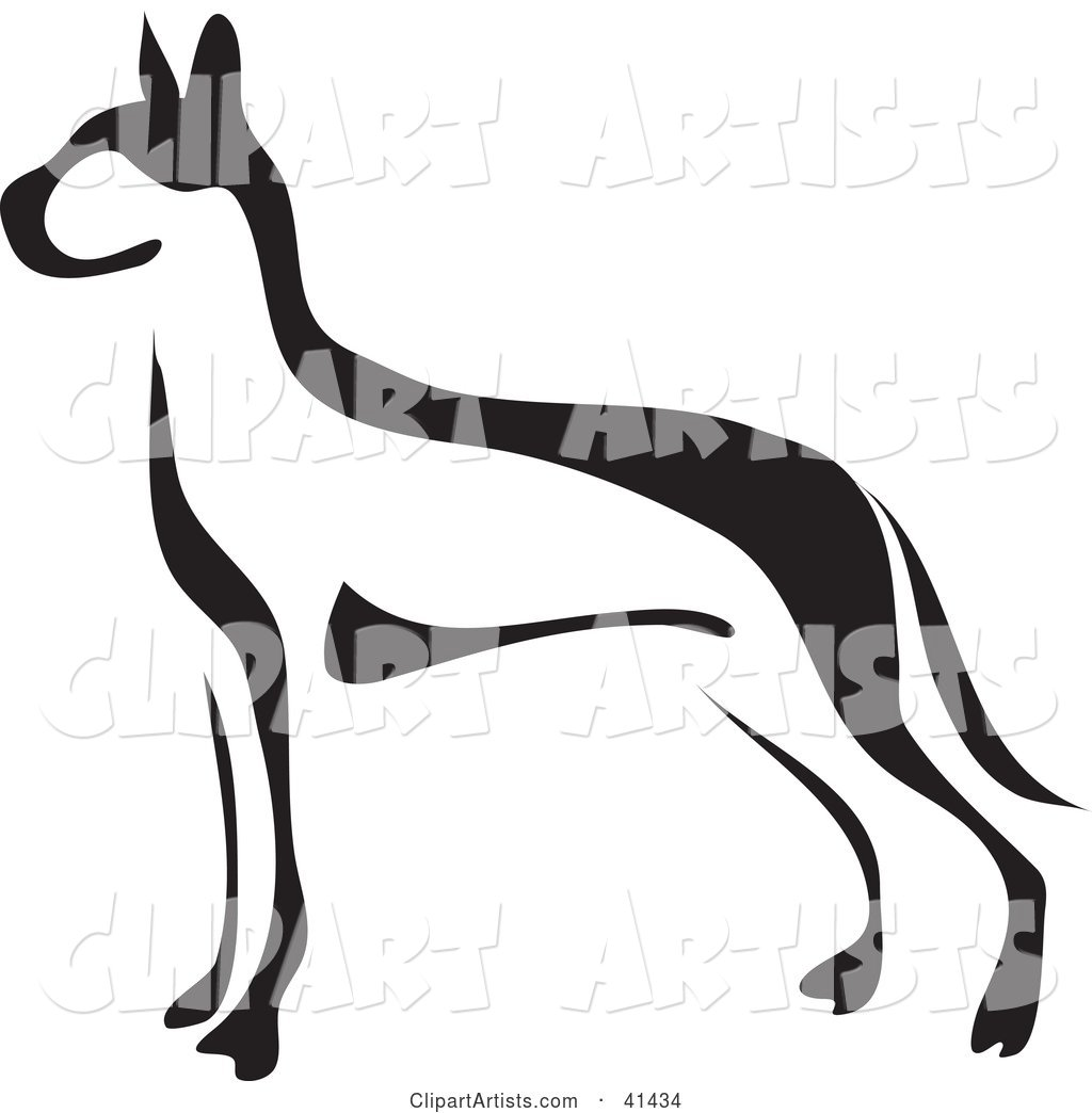 Black and White Paintbrush Styled Image of a Great Dane