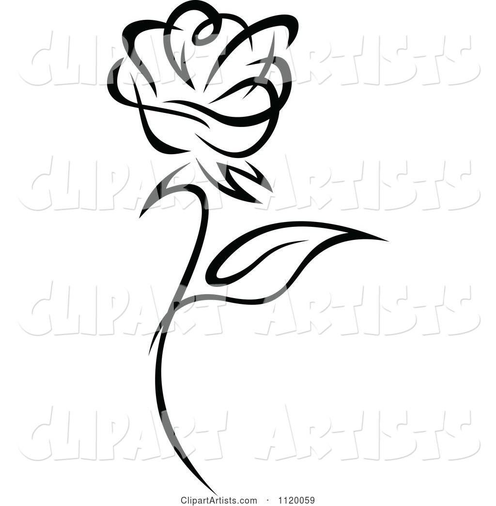 Black and White Rose Flower 1