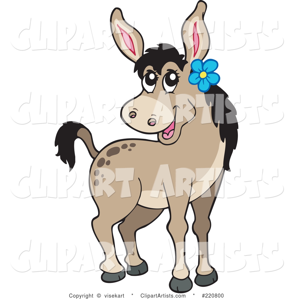 Cute Female Donkey Wearing a Blue Flower by Her Ear