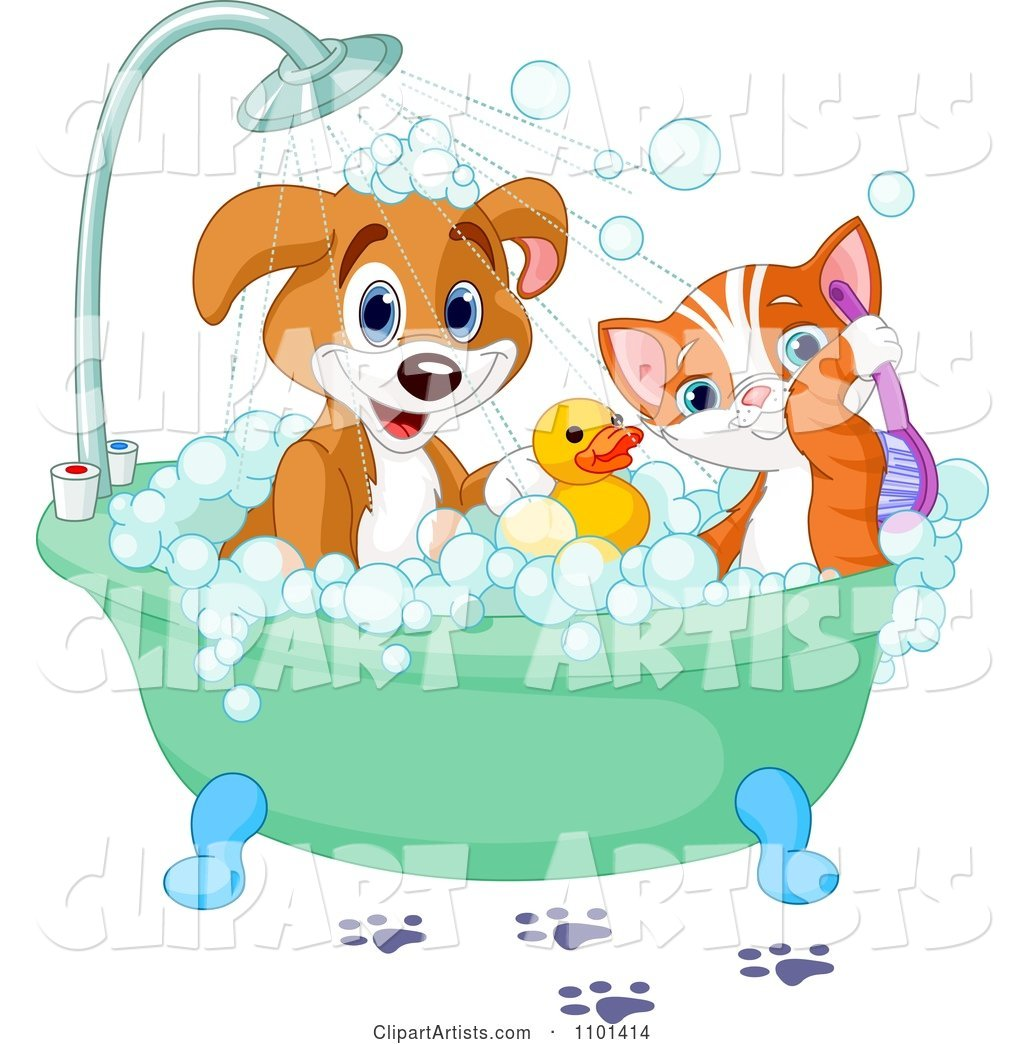 Cute Happy Puppy and Cat Bathing with a Rubber Duck