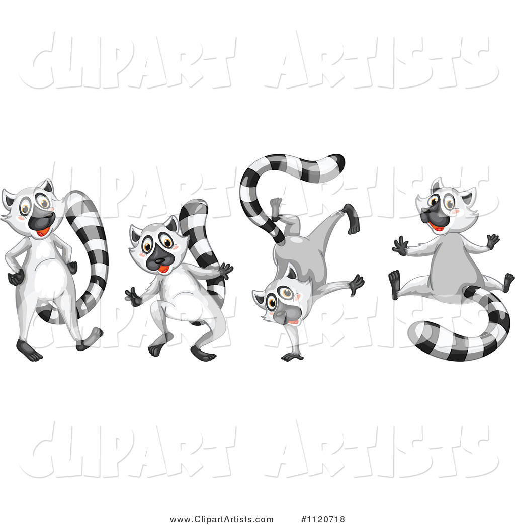 Cute Lemur in Different Poses