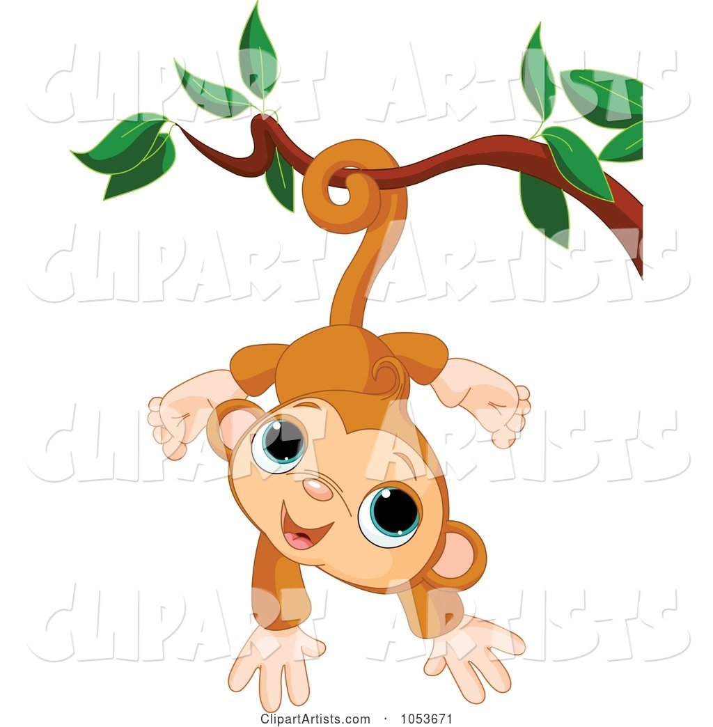 Cute Monkey Hanging from a Branch