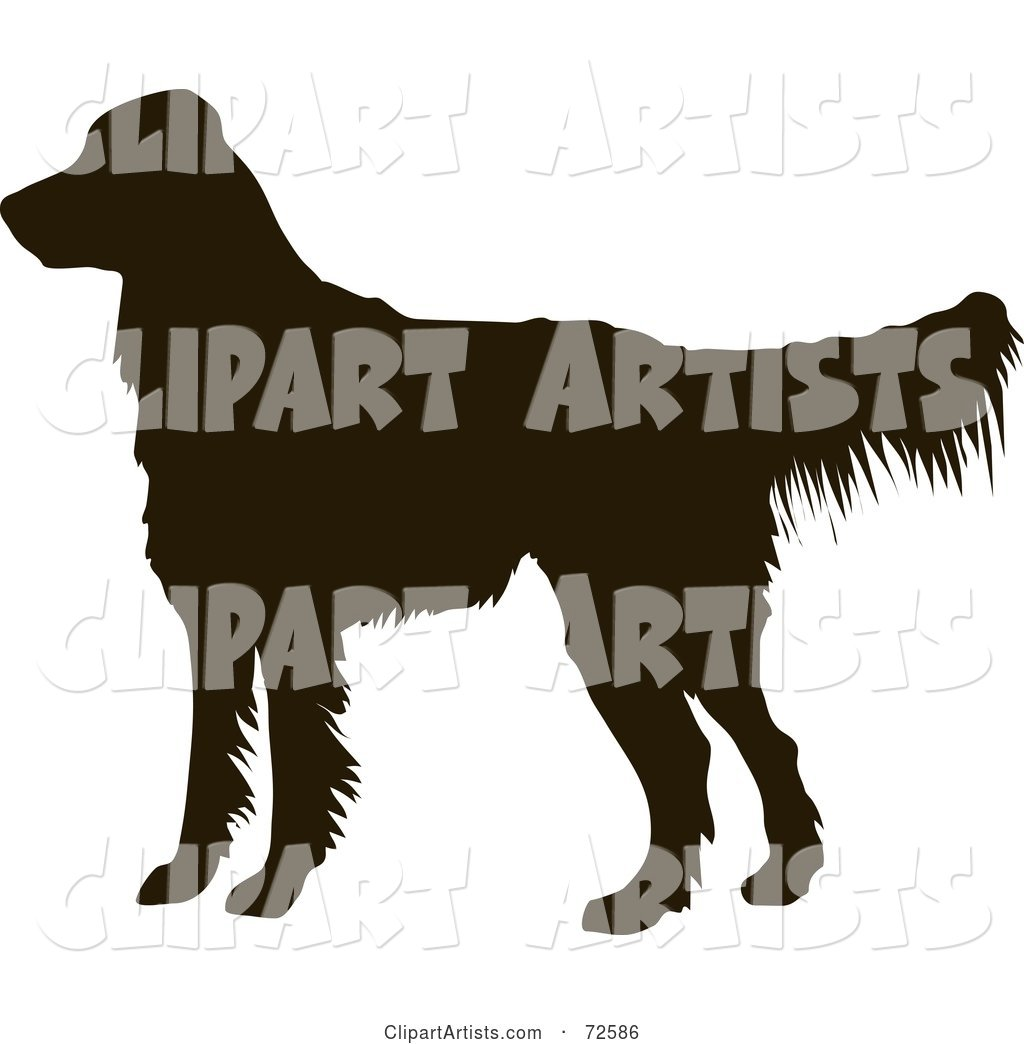 Dark Brown Golden Retriever Dog Silhouette