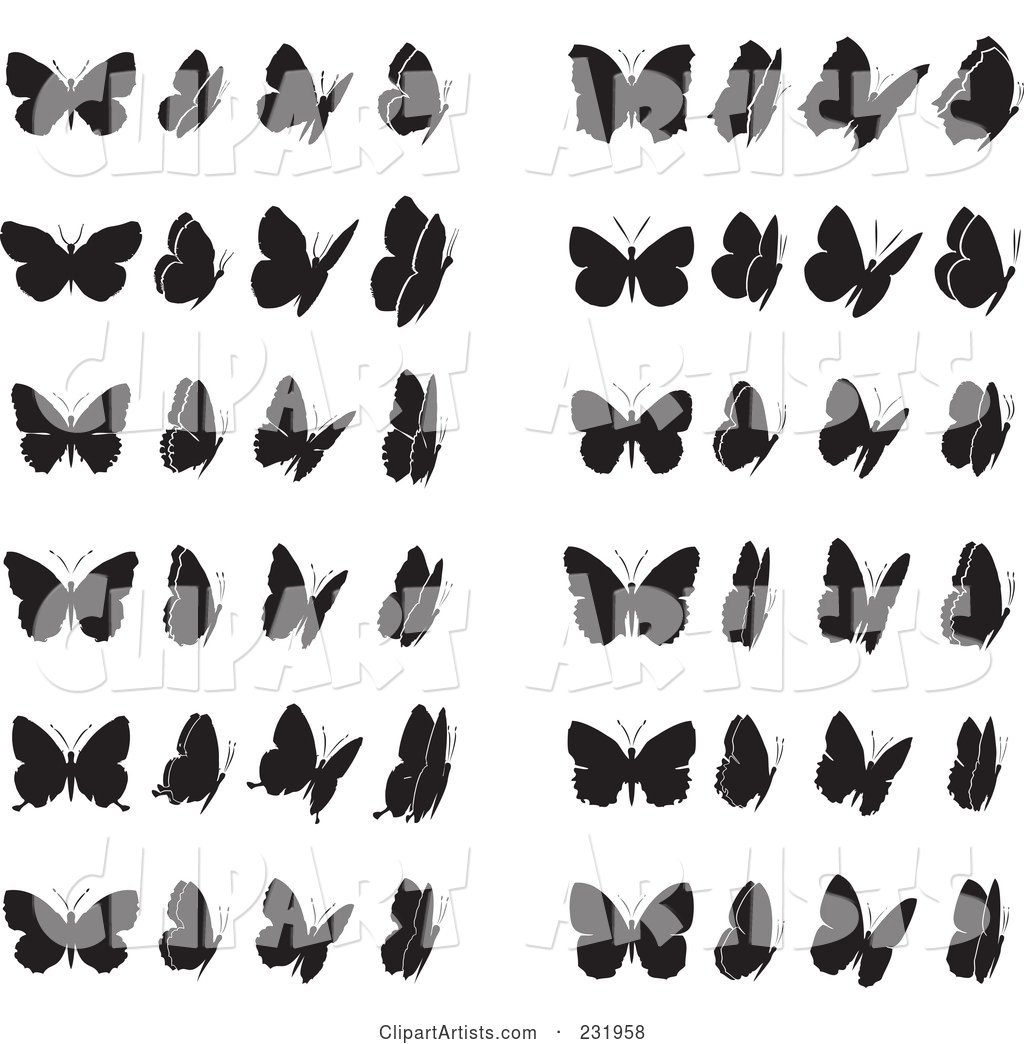 Digital Collage of Black and White Butterflies - 1