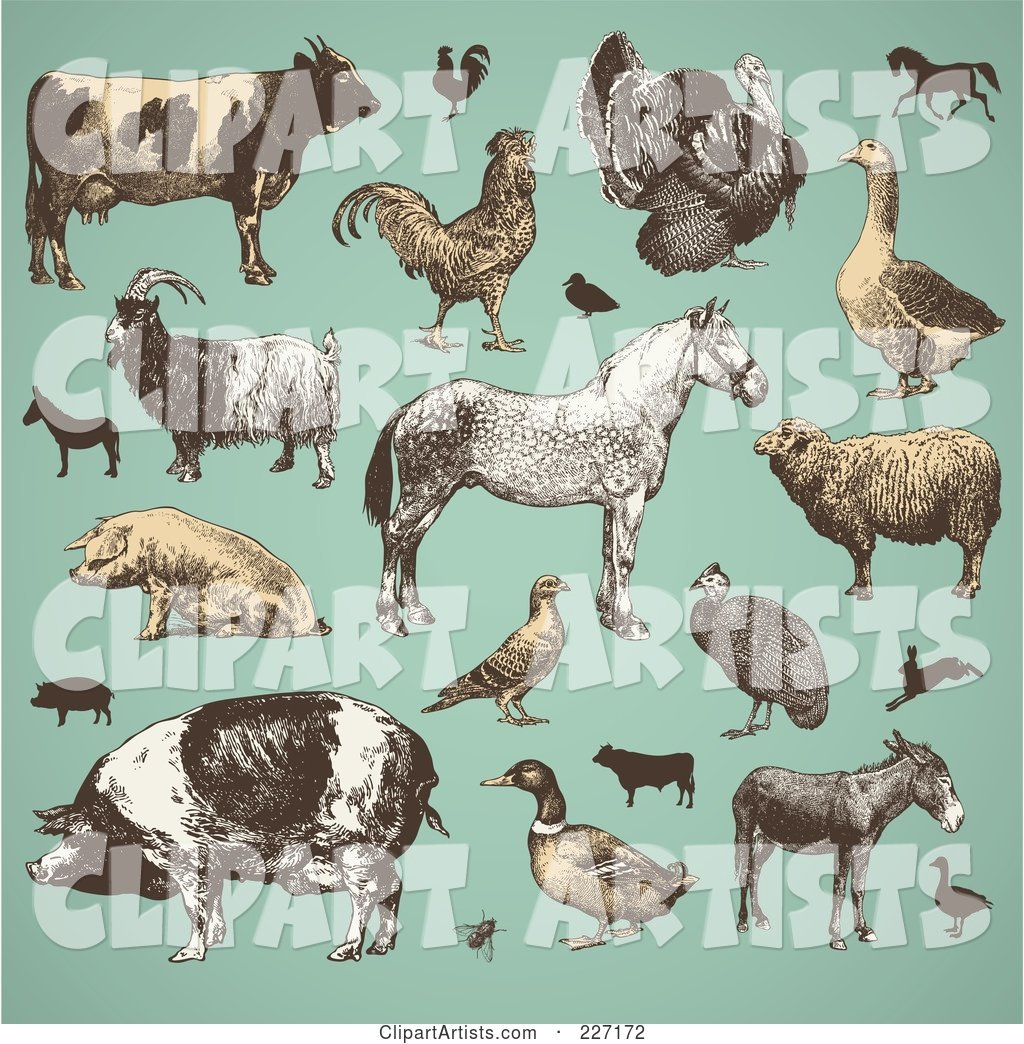 Digital Collage of Vintage Farm Animals and Livestock on Turquoise