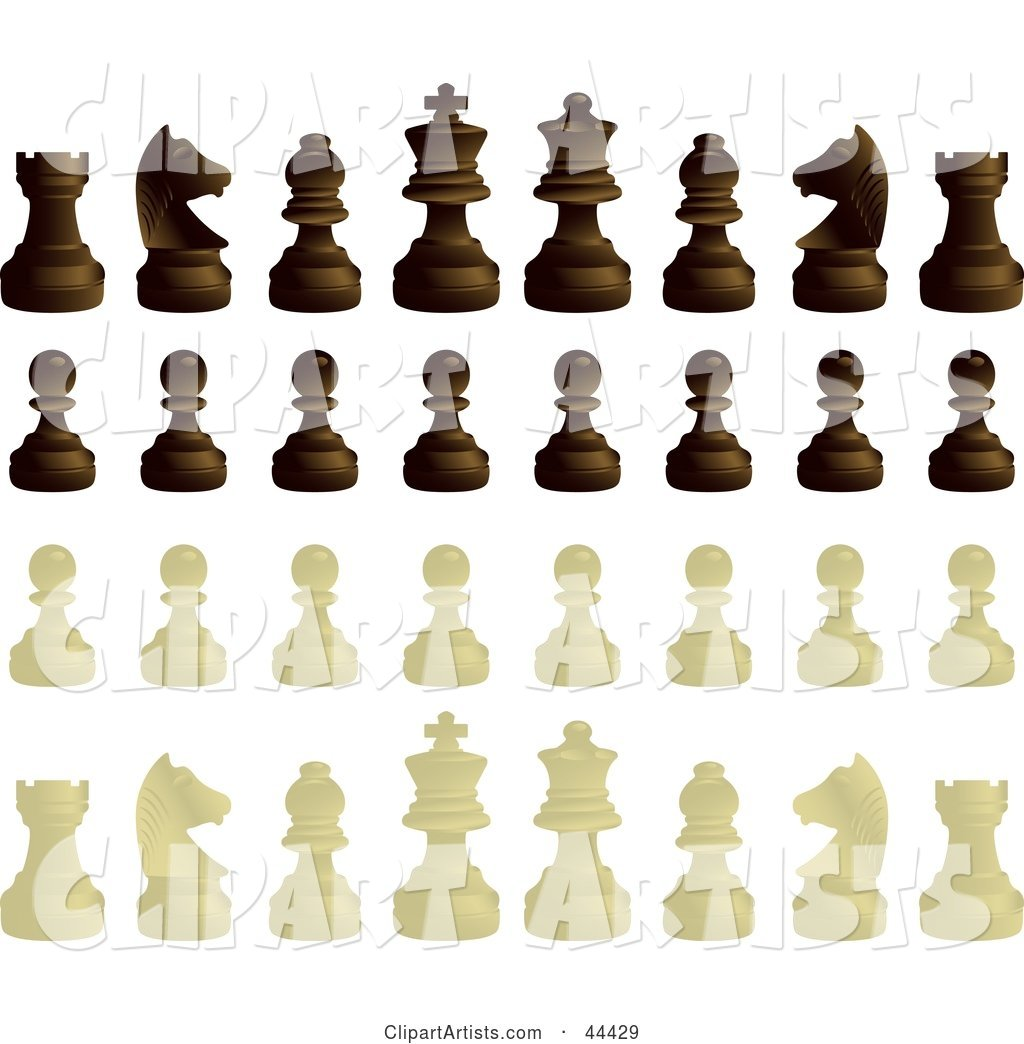 Ebony and Ivory Chess Pieces