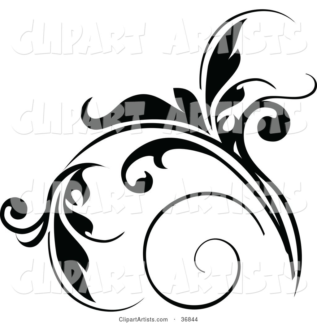 Floral Design Element in Black, with Tendrils