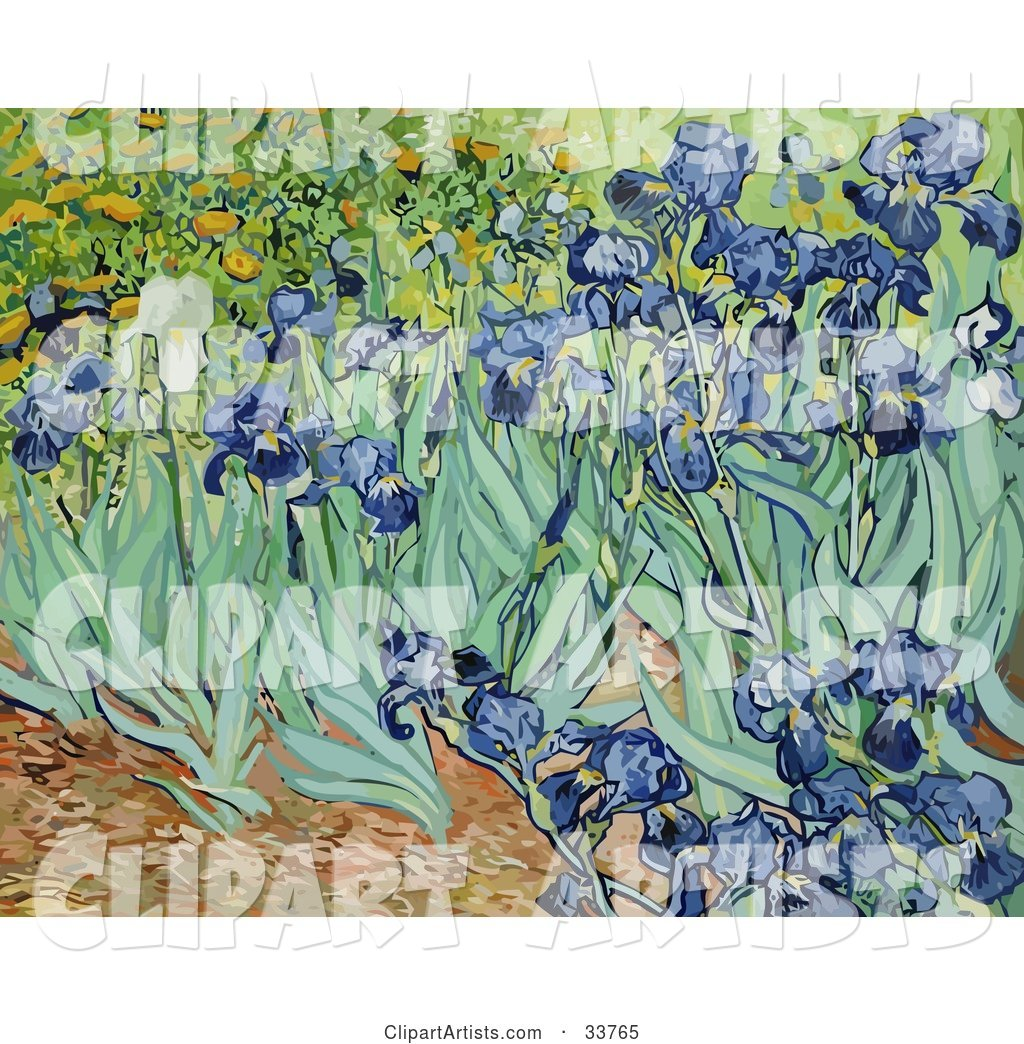 Flower Bed of Iris Flowers, Original by Vincent Van Gogh