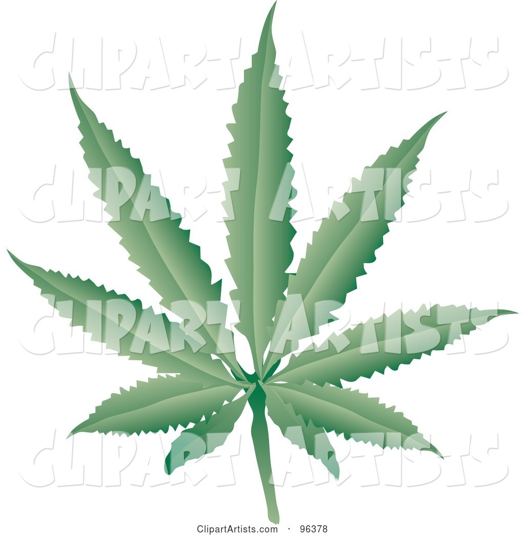 Fresh Green Cannabis Leaf