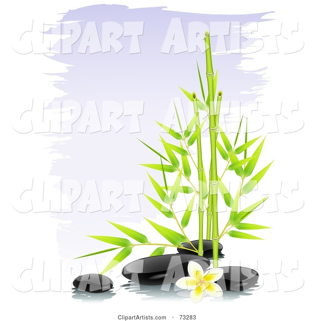 Green Bamboo with Black Spa Stones and a Frangipani Flower over Purple Brush Strokes