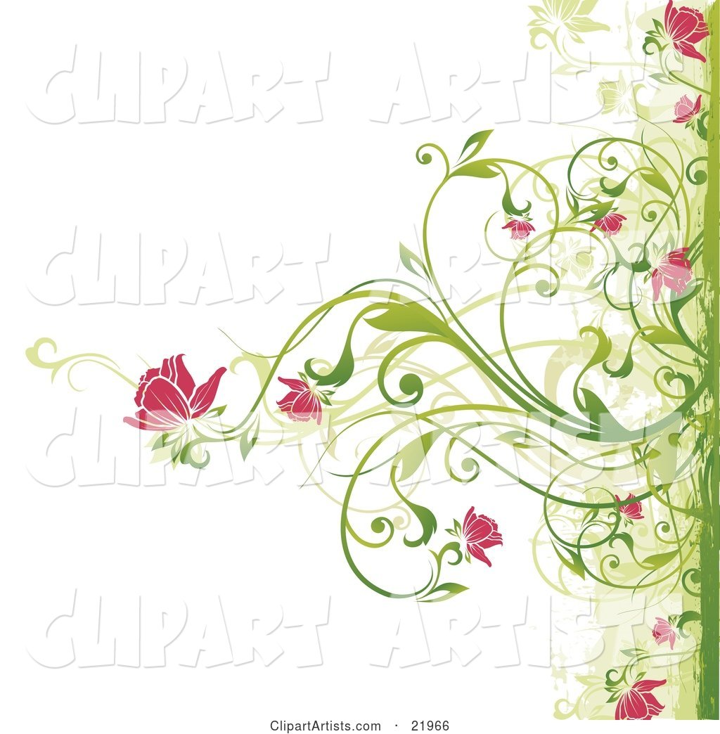Green Plant Blooming Pink Flowers over a White Background