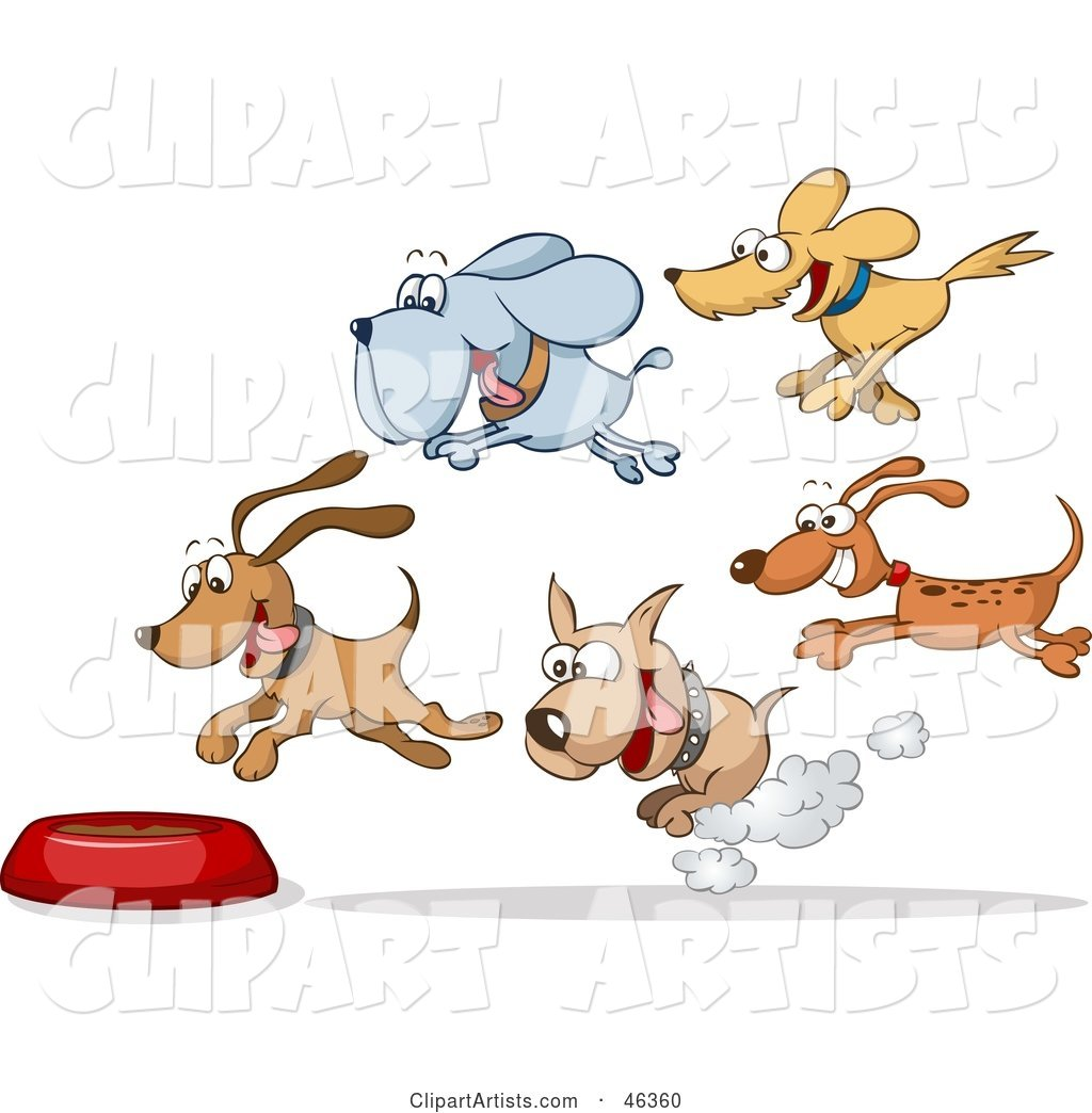 Group of Hungry Dogs Racing and Flying Towards a Food Bowl