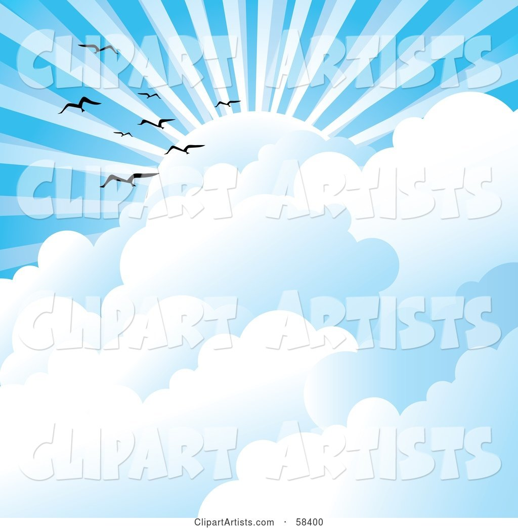 Gulls Flying Above Clouds Under Sun Rays in a Blue Sky