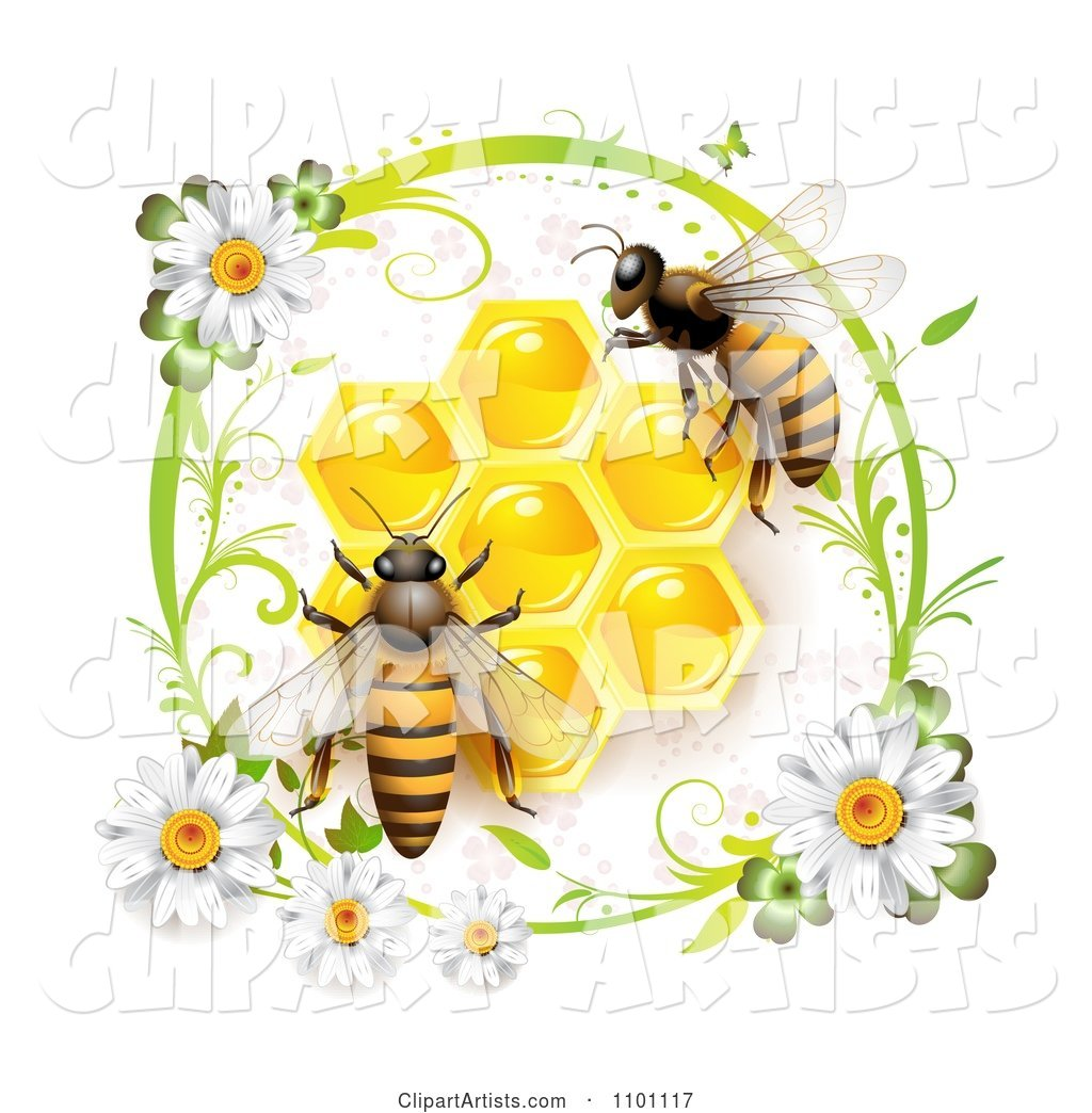 Honey Bees over Honeycombs in a Green Daisy Frame