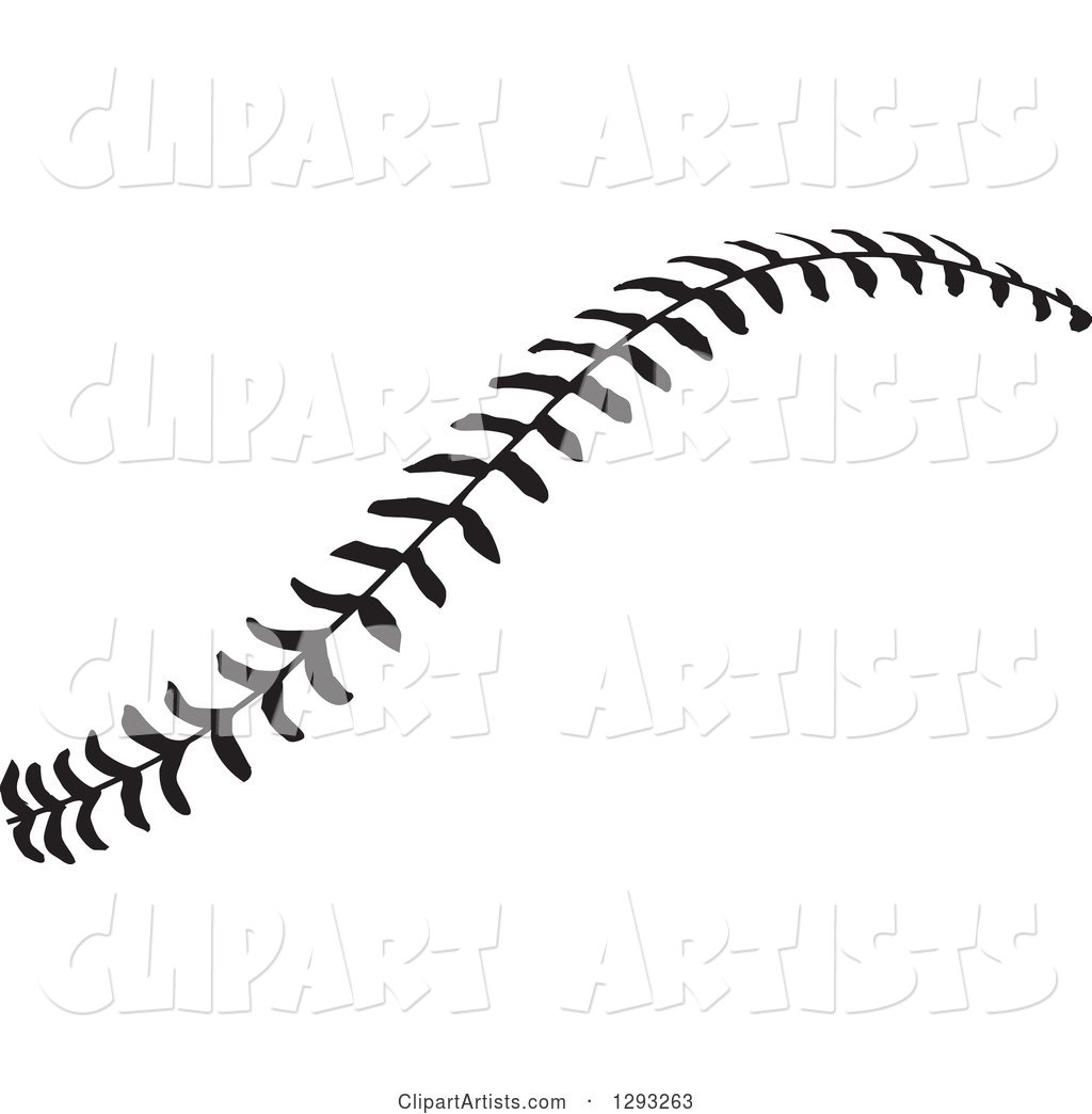 Horizontal Black and White Baseball Stitching