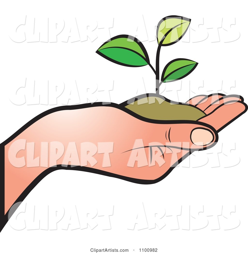 Human Hand Holding a Plant in Soil