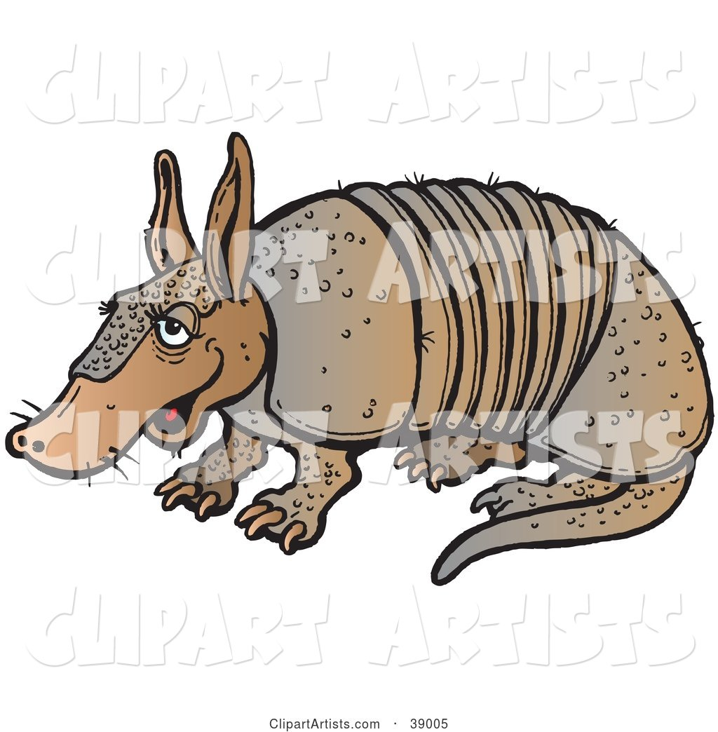 Lazy Brown Armadillo Sitting