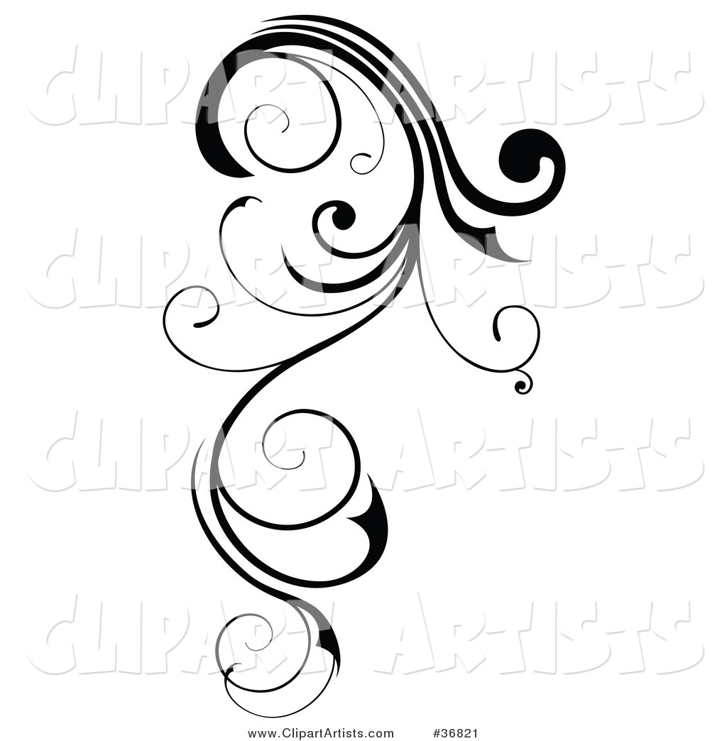 Long, Black Curly Design Element Scroll