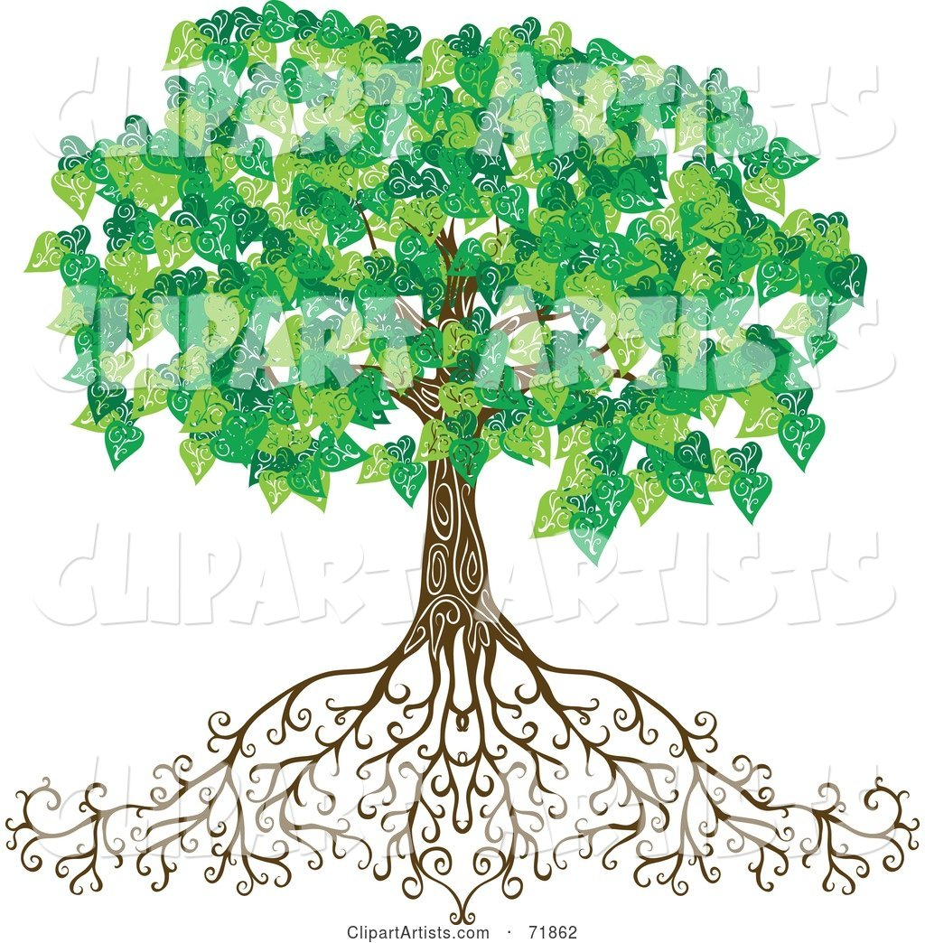 Mature Green Tree with Deep Roots