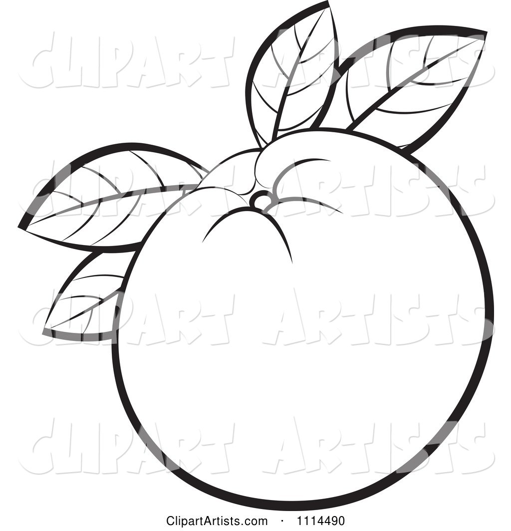 Outlined Orange Fruit with Leaves