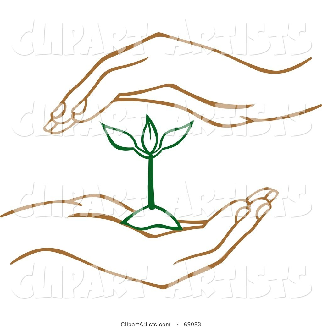 Pair of Human Hands Protecting a Green Seedling Plant