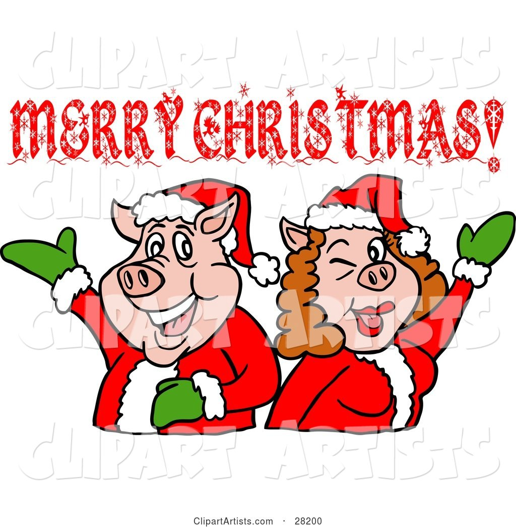 Pig Couple in Santa Suits, Holding Their Arms up Under a Merry Christmas Greeting