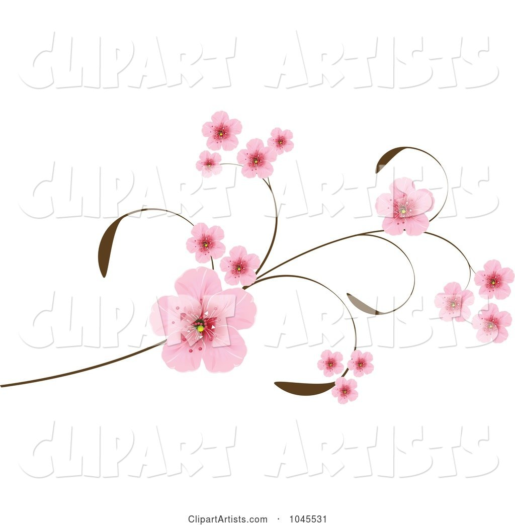 Pink Cherry Blossoms on an Elegant Branch