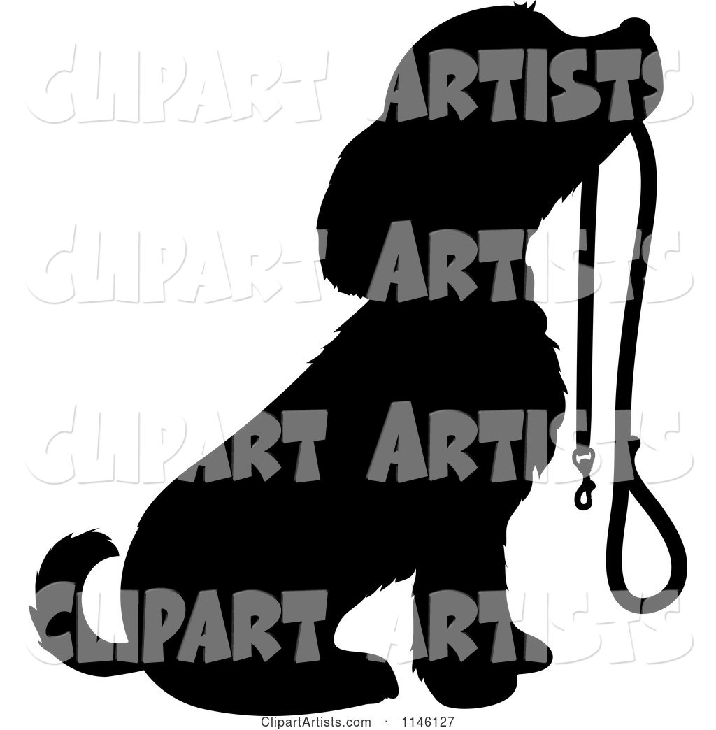 Silhouetted Puppy Sitting with a Leash in Its Mouth