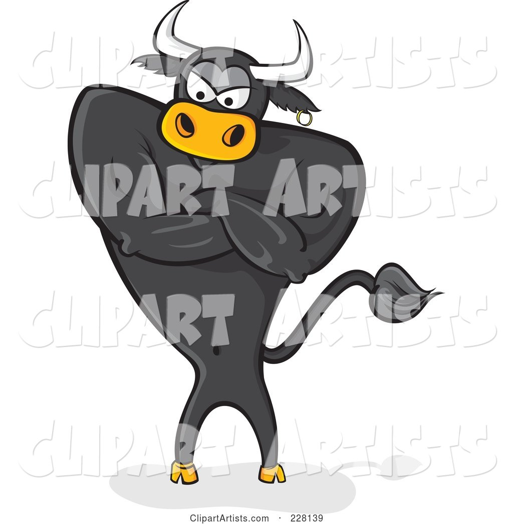 Standing Black Bull with an Attitude and Crossed Arms