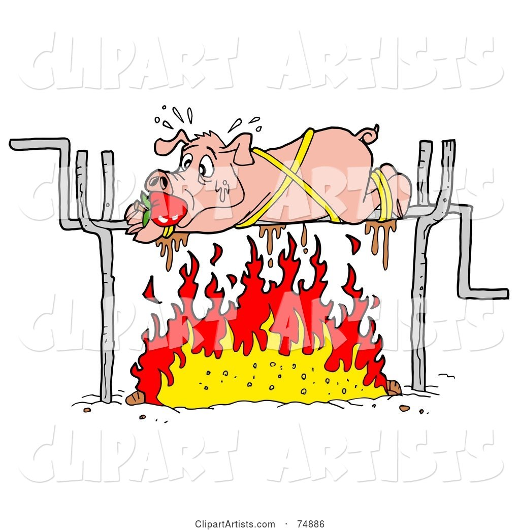 Sweaty Pig Spinning over a Fire