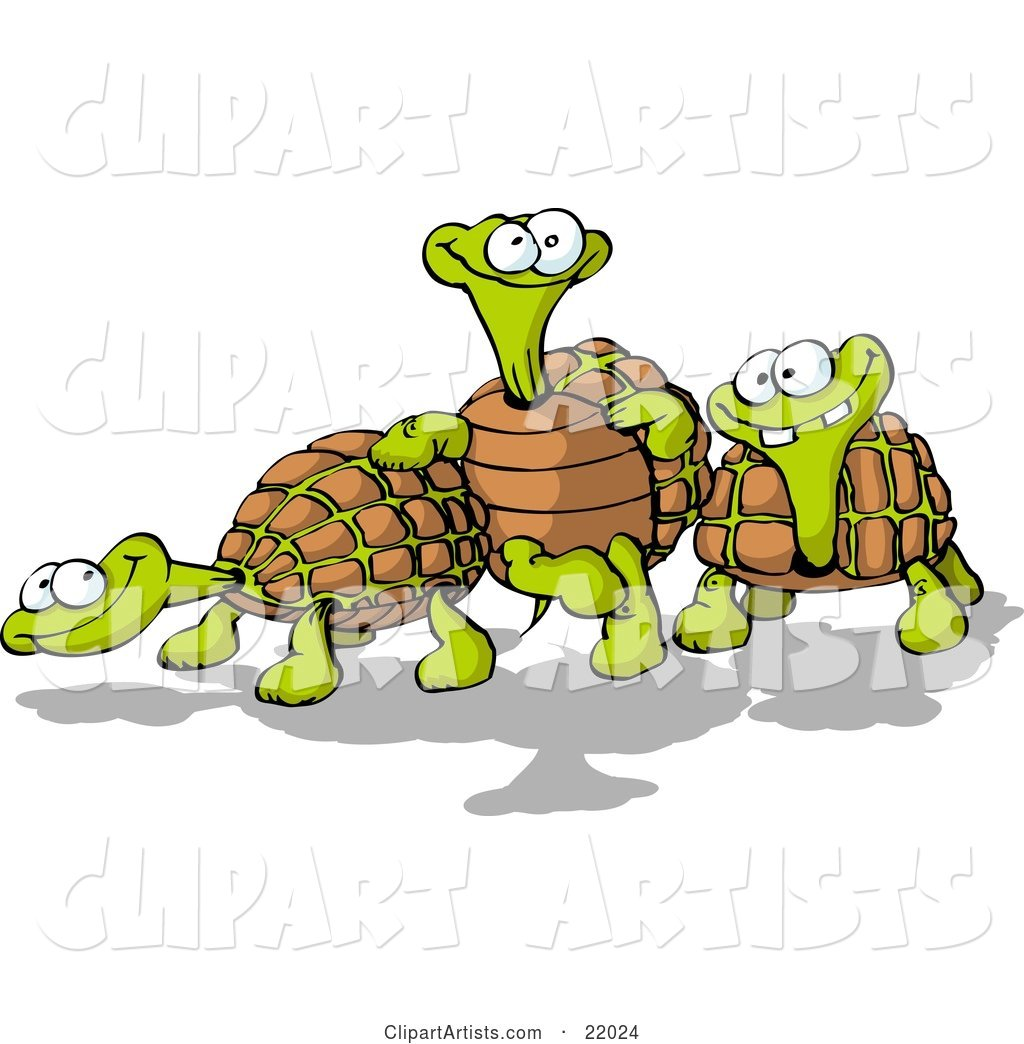 Three Goofy Tortoise Turtles, One Leaning Against Another