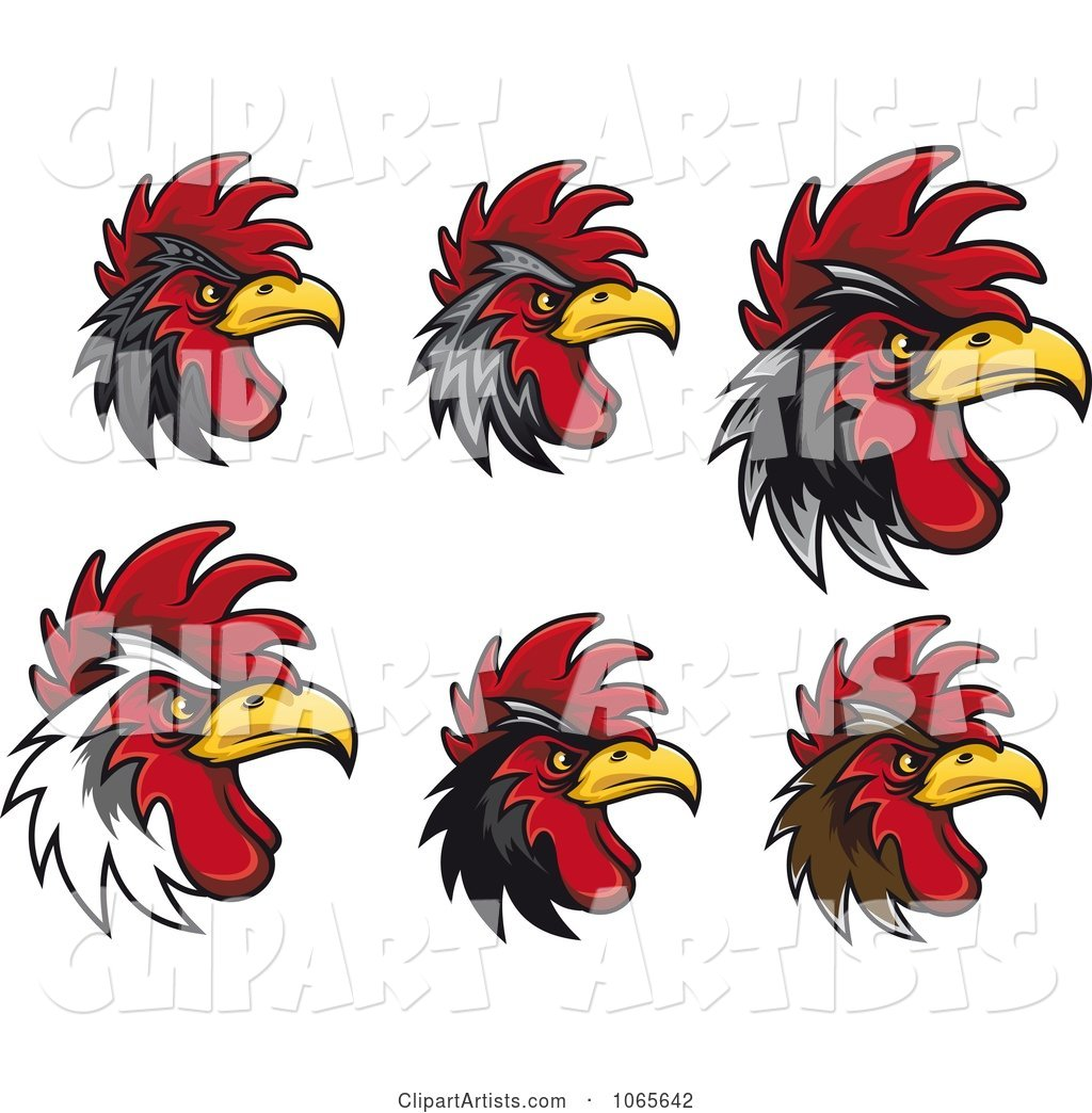 Tough Roosters 1