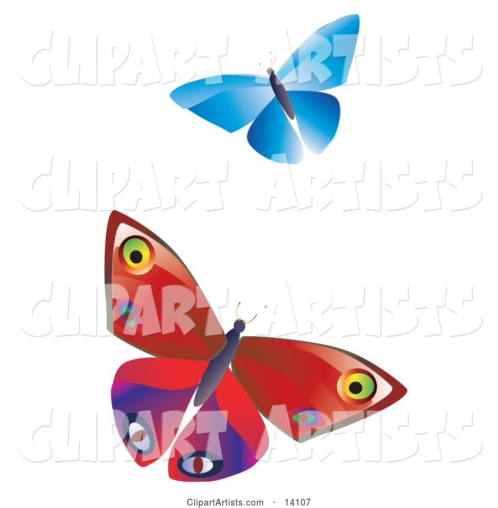 Two Colorful Butterflies, One Blue One Red with Patterns, Fluttering over a White Background