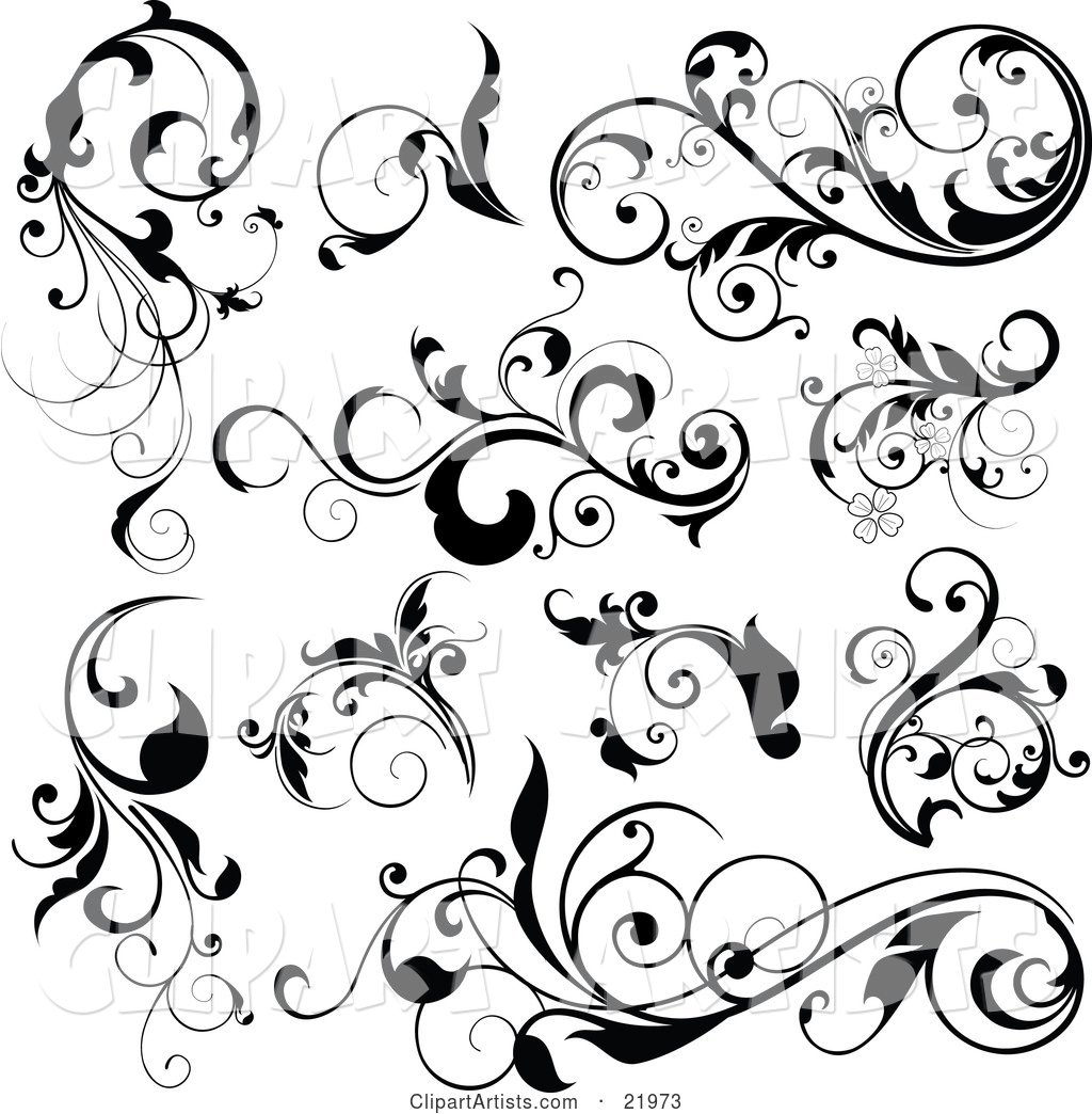 On A White Background Vector 34034 Long Black Flourish Scroll