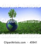 Healthy Tree Growing on Top of a Globe on a Grassy Hill Under a Blue Sky