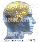 Rendered Man with a Golden Brain, in Profile