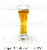 Tall Golden Glass of Beer