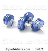 Two Blue Free Weights