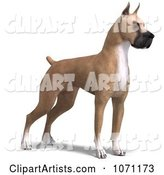 3d Great Dane Clipart by Ralf61