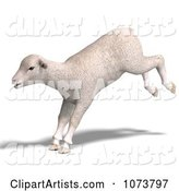 3d Lamb Clipart by Ralf61