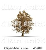 3d Tree Clipart by Chrisroll